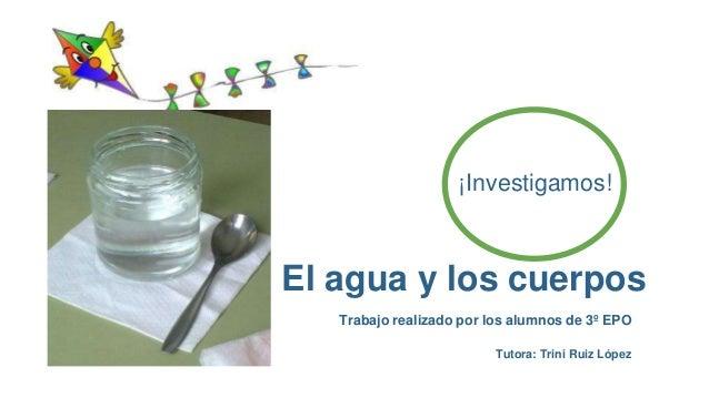 El agua y los cuerpos Trabajo realizado por los alumnos de 3º EPO ¡Investigamos! Tutora: Trini Ruiz López