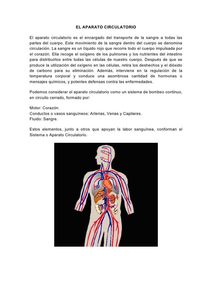 EL APARATO CIRCULATORIO  El aparato circulatorio es el encargado del transporte de la sangre a todas las partes del cuerpo...