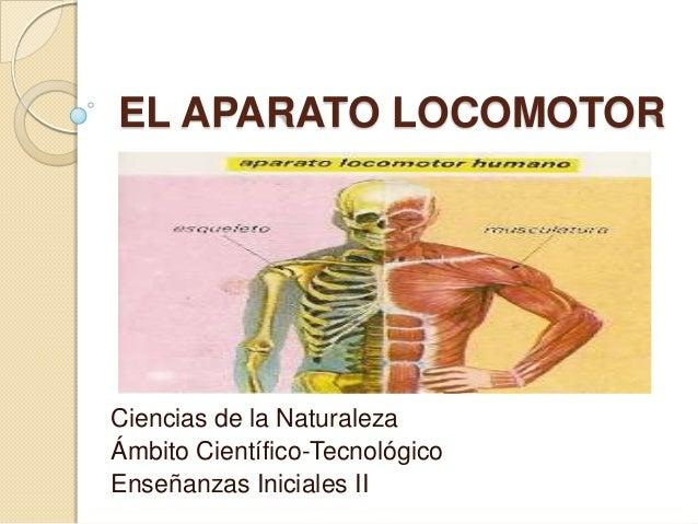 EL APARATO LOCOMOTOR Ciencias de la Naturaleza Ámbito Científico-Tecnológico Enseñanzas Iniciales II