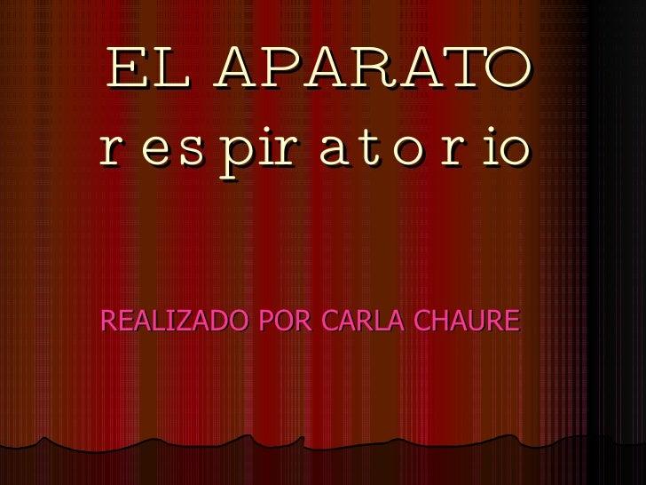 EL APARATO respiratorio REALIZADO POR CARLA CHAURE
