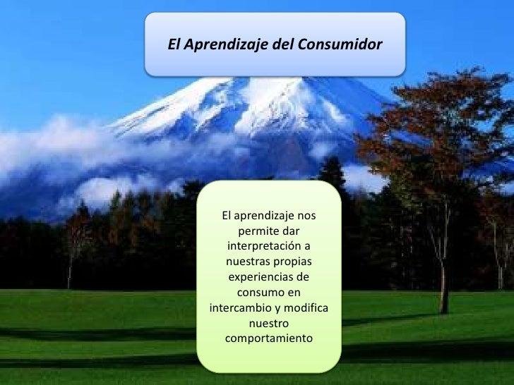 El Aprendizaje del Consumidor<br />El aprendizaje nos permite dar interpretación a nuestras propias experiencias de consum...