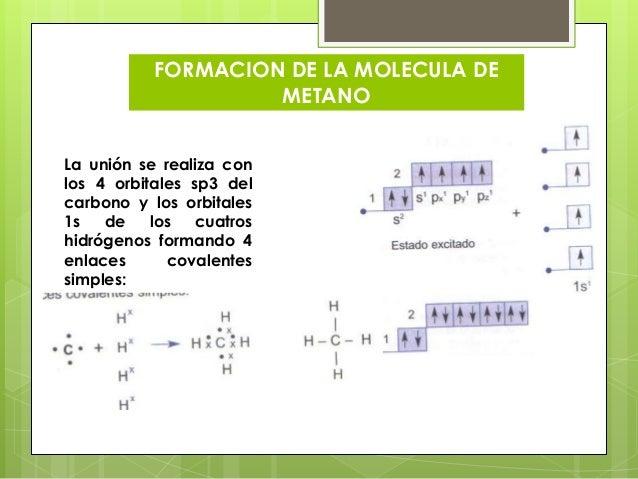 Hibridacion Digonal Del