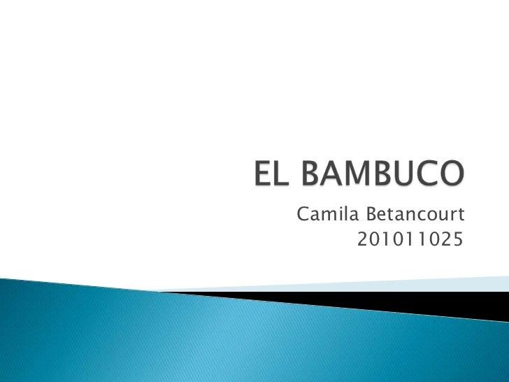 EL BAMBUCO<br />Camila Betancourt<br />201011025<br />