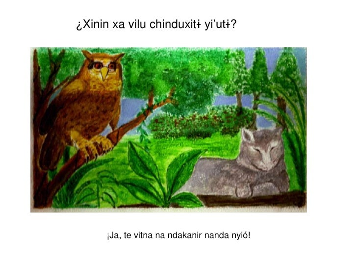 ¿Xinin xa vilu chinduxitɨ yi'utɨ?      ¡Ja, te vitna na ndakanir nanda nyió!