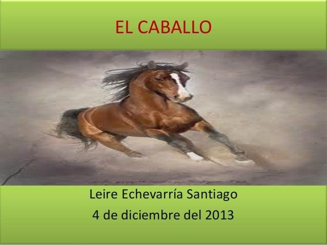 EL CABALLO  Leire Echevarría Santiago 4 de diciembre del 2013