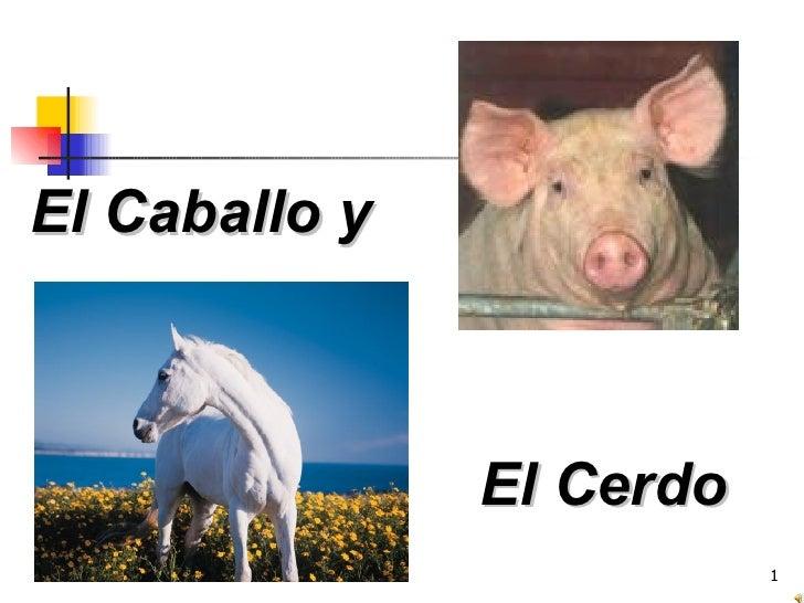 El caballo y el cerdo