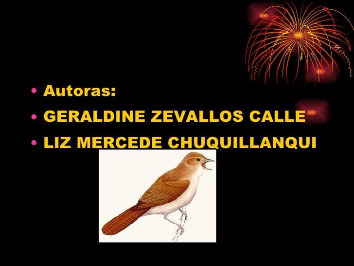 <ul><li>Autoras: </li></ul><ul><li>GERALDINE ZEVALLOS CALLE </li></ul><ul><li>LIZ MERCEDE CHUQUILLANQUI </li></ul>