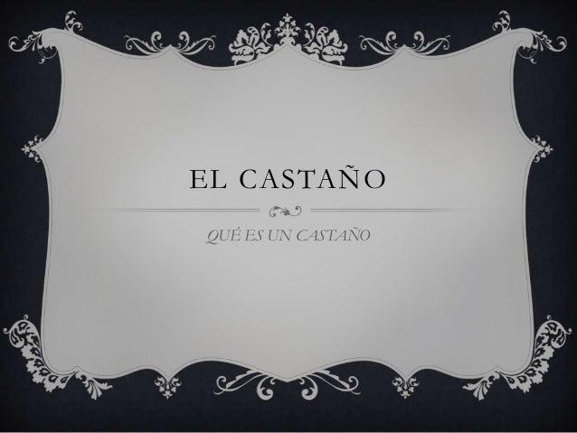 EL CASTAÑO QUÉ ES UN CASTAÑO