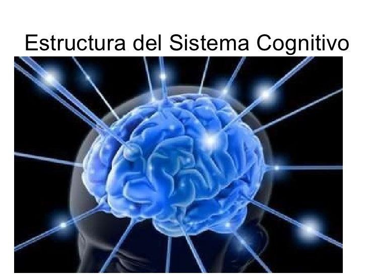 Estructura del Sistema Cognitivo