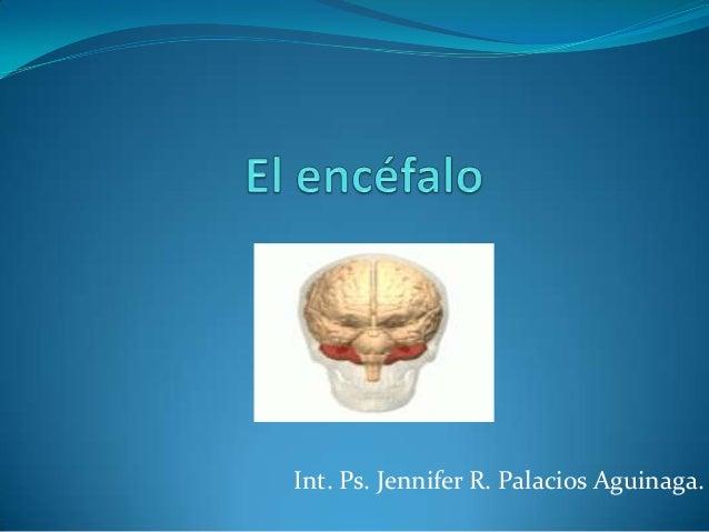 Int. Ps. Jennifer R. Palacios Aguinaga.