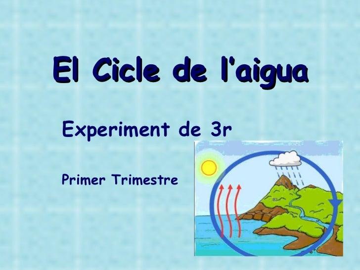 El Cicle de l'aigua Experiment de 3r Primer Trimestre