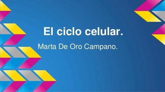 El ciclo celular. Marta De Oro Campano.