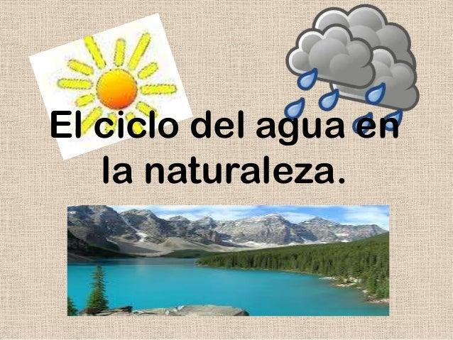 Ciclos Del Agua en la Naturaleza el Ciclo Del Agua en la