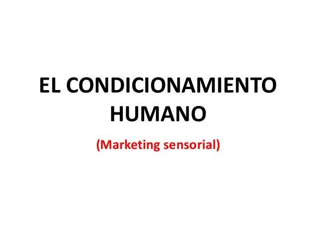 EL CONDICIONAMIENTO  HUMANO  (Marketing sensorial)