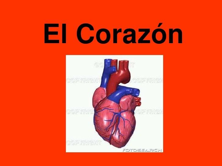 El Corazón<br />