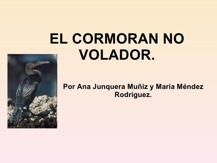 EL CORMORAN NO VOLADOR. Por Ana Junquera Muñiz y María Méndez Rodríguez.