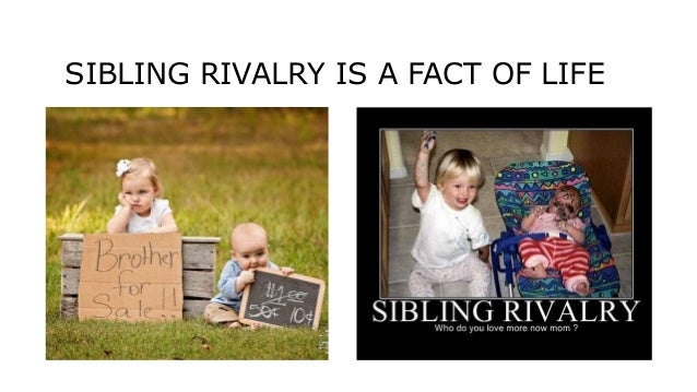 Sibling Rivalry Cause And Effect Essay - image 6