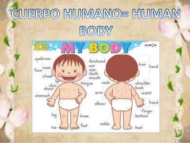 ESPAÑOL INGLES PRONUNCIACION CABEZA HEAD HED PIERNA LEG LEG TOBILLO ANKLE ANKEL NARIZ NOSE NOUS OREJA EAR IA HOMBRO SHOULD...