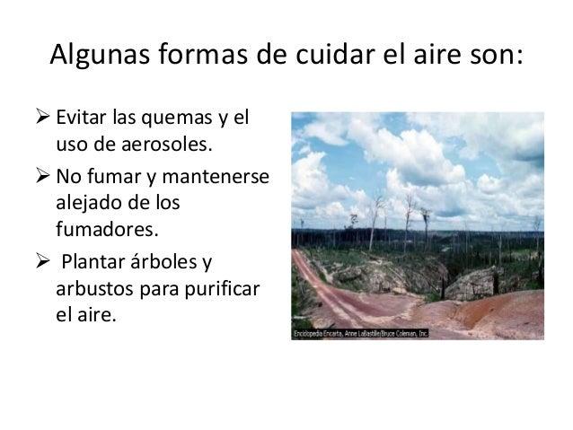 Imagenes del cuidado del aire - Imagui