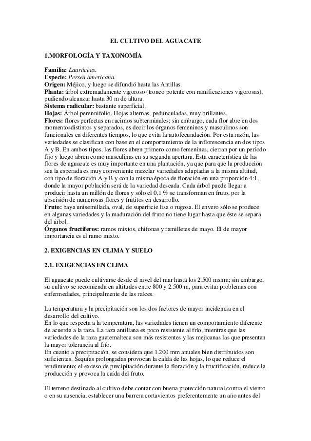 EL CULTIVO DEL AGUACATE1.MORFOLOGÍA Y TAXONOMÍAFamilia: Lauráceas.Especie: Persea americana.Origen: Méjico, y luego se dif...