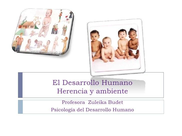 El Desarrollo Humano Herencia y ambiente    Profesora Zuleika BudetPsicología del Desarrollo Humano