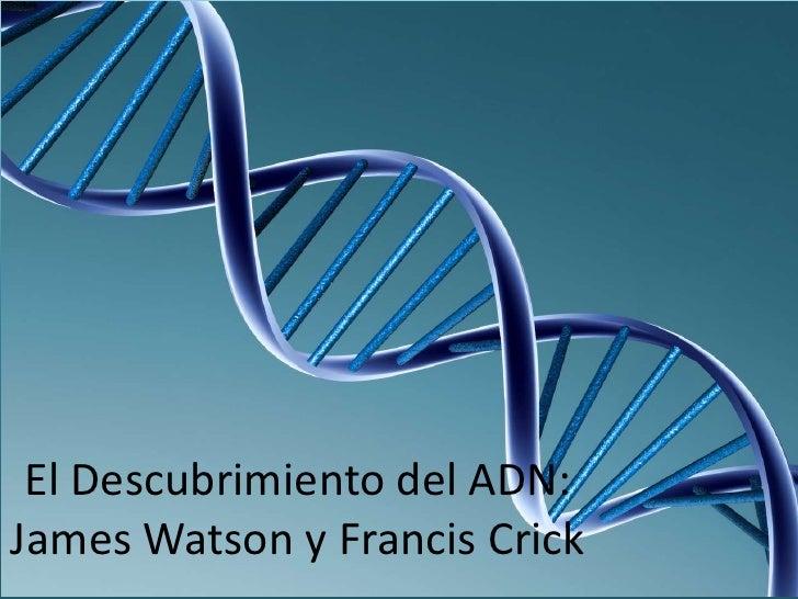 El Descubrimiento del ADN:James Watson y Francis Crick