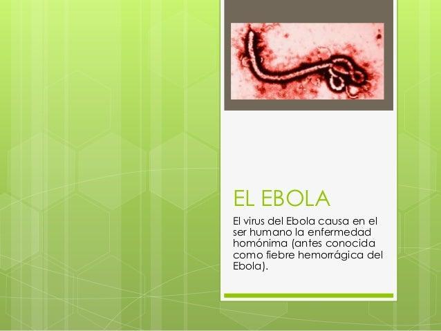 EL EBOLA El virus del Ebola causa en el ser humano la enfermedad homónima (antes conocida como fiebre hemorrágica del Ebol...