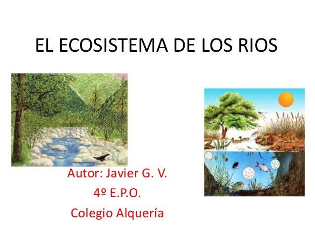 EL ECOSISTEMA DE LOS RIOS   Autor: Javier G. V.       4º E.P.O.   Colegio Alquería