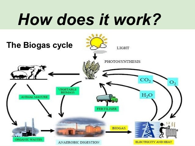 http://image.slidesharecdn.com/electricity-biogas-121120130642-phpapp01/95/electricity-biogas-2-638.jpg?cb=1353416853
