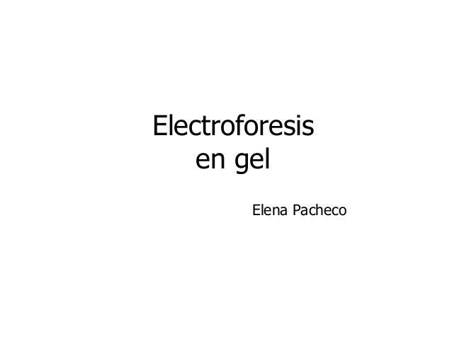 Electroforesis  en gel  Elena Pacheco