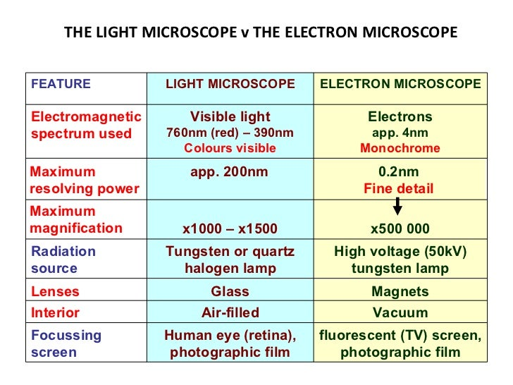 light and electron microscopes essay Electron microscope - essay an electron microscope is a type of the microscope has a greater resolving power than a light-powered optical microscope.