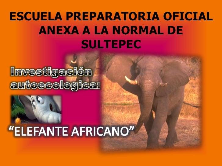 ESCUELA PREPARATORIA OFICIAL    ANEXA A LA NORMAL DE          SULTEPEC