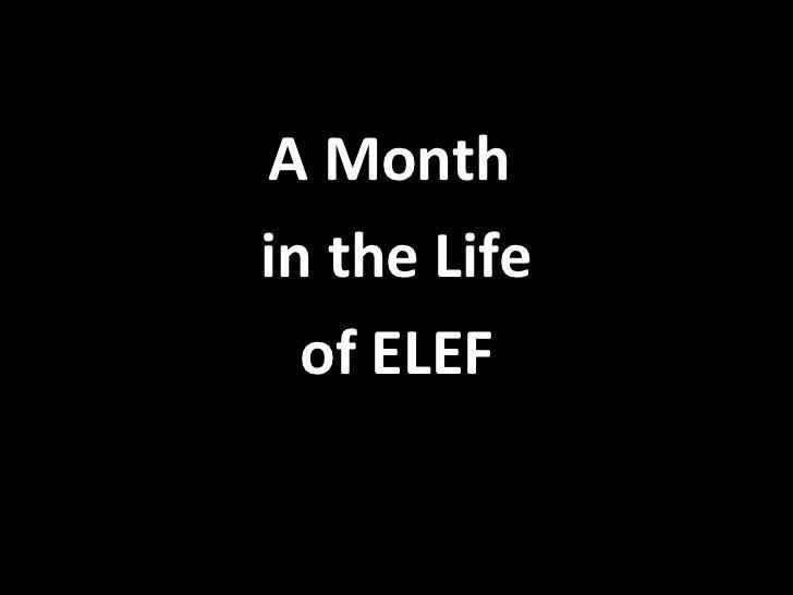 <ul><li>A Month  </li></ul><ul><li>in the Life </li></ul><ul><li>of ELEF </li></ul>