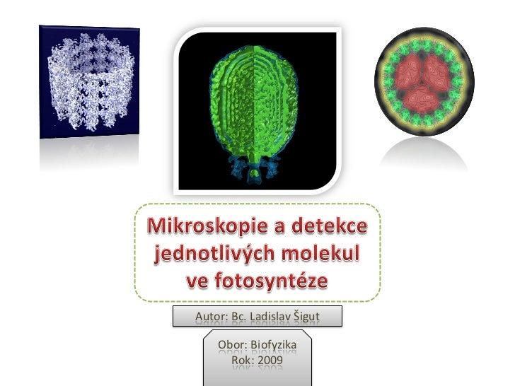 Autor: Bc. Ladislav Šigut    Obor: Biofyzika      Rok: 2009