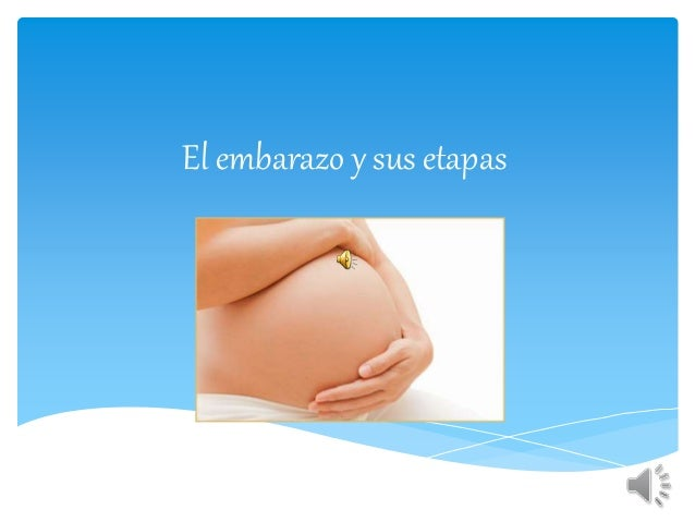 4 mes embarazo: