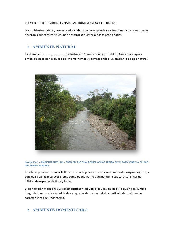 Elementos del ambientes natural