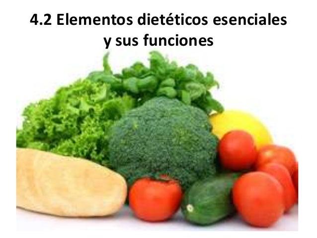 4.2 Elementos dietéticos esenciales y sus funciones