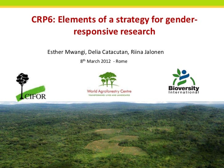 Elements of a strategy for gender responsive research