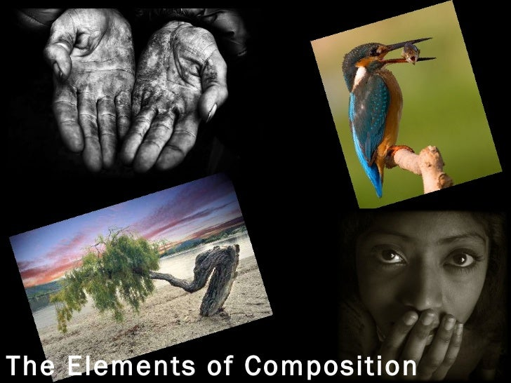 The Elements of Composition