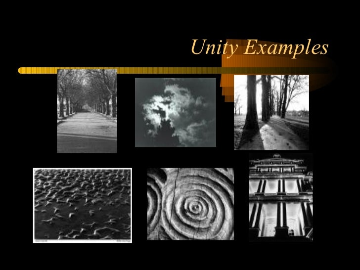 Elements and Principles of Design in Photography
