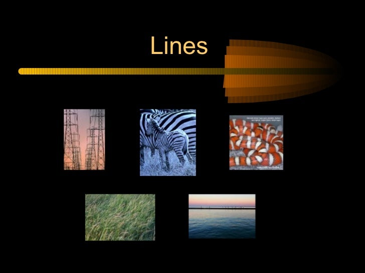Elements And Principles Of Design Form : Elements and principles of design in photography