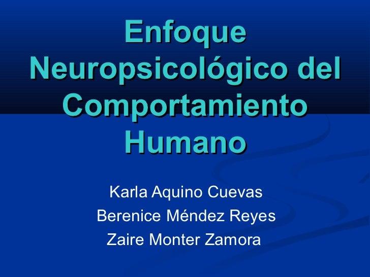 EnfoqueNeuropsicológico del  Comportamiento     Humano     Karla Aquino Cuevas    Berenice Méndez Reyes     Zaire Monter Z...