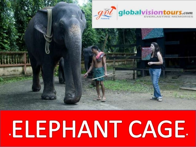 Konni Elephant Cage Konni is a small hilly town in the Pathanamthitta district, Kerala state, India. The elephant training...