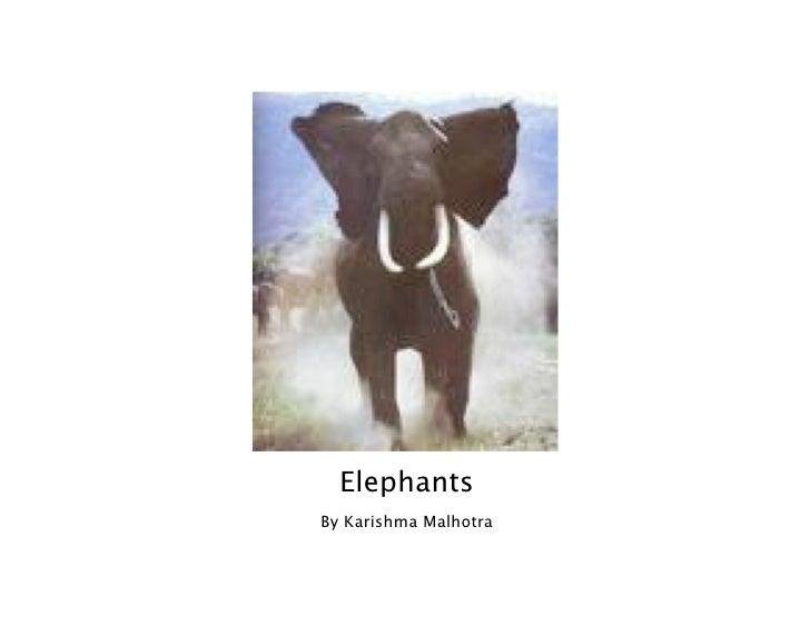 Elephants By Karishma Malhotra