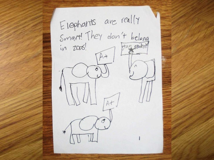 Elephant Project Book Slides