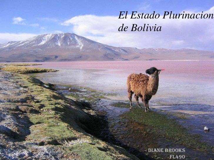 El Estado Plurinacional de Bolivia<br />Diane Brooks<br />FL490<br />