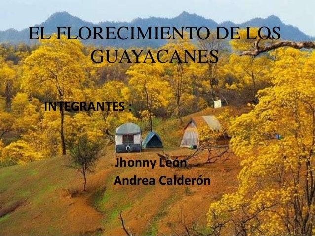 EL FLORECIMIENTO DE LOS GUAYACANES INTEGRANTES :  Jhonny León Andrea Calderón