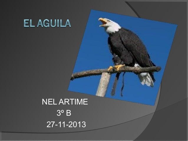 NEL ARTIME 3º B 27-11-2013