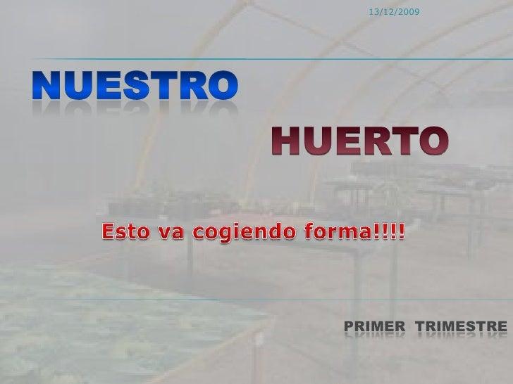 NUESTRO<br />HUERTO<br />Esto va cogiendo forma!!!!<br />Primer  trimestre<br />13/12/2009<br />