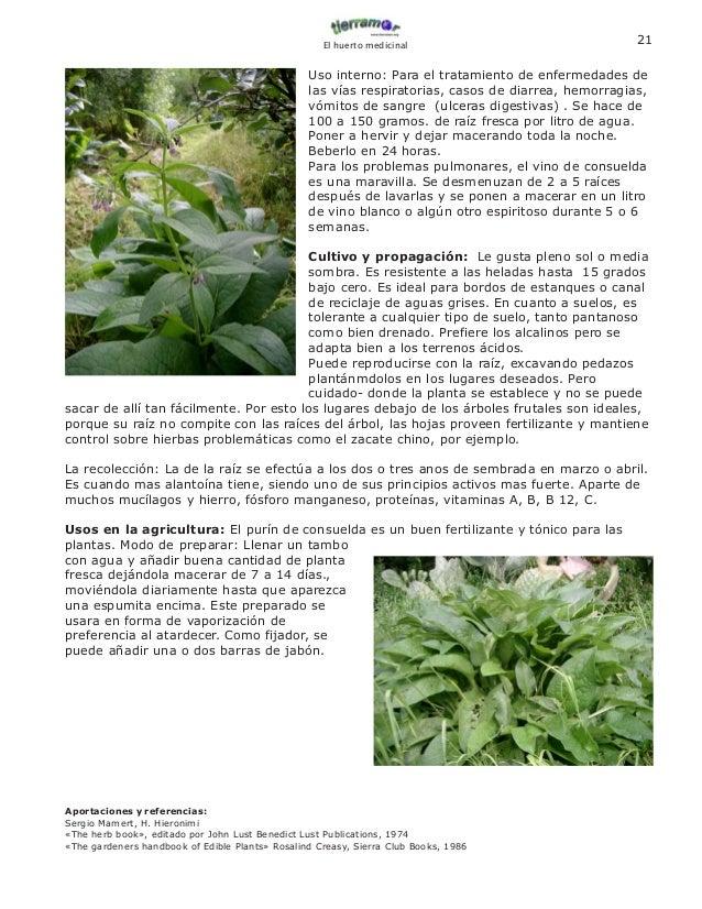 Baño Plantas Amargas:El huertomedicinal2006 ebook